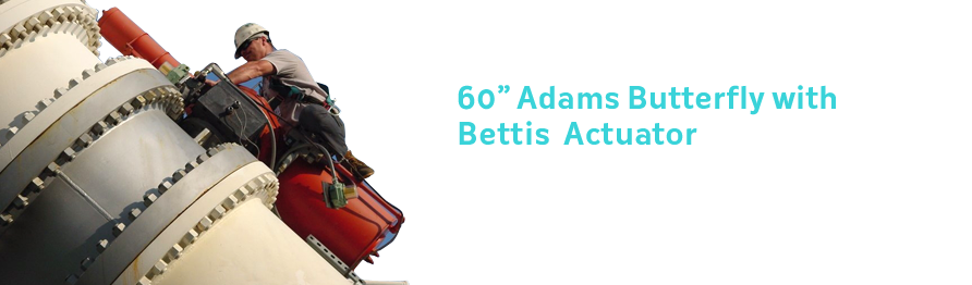 60 Adams Butterfly with Bettis Actuator